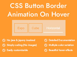 Hover Effects