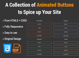 Animated CSS3