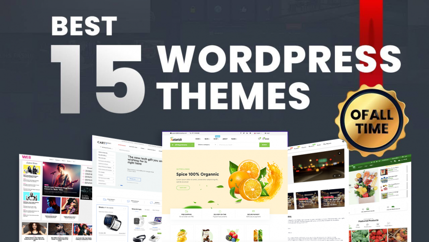 Get The Best Themes For Your Website